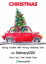 Special Delivery | Christmas Tree Delivery